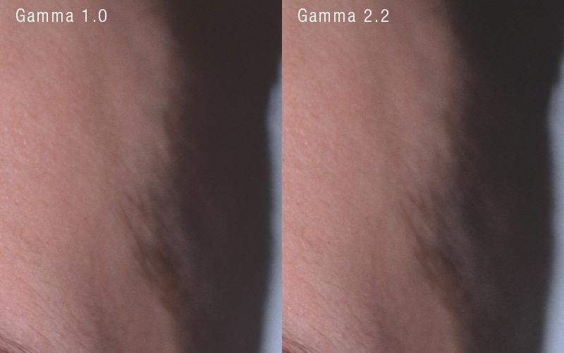 Gamma 1.0 vs Gamma 2.2